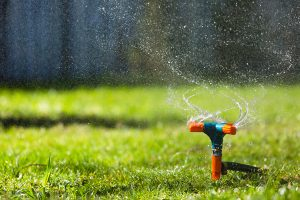 Plumber in Warrandyte helps you save water