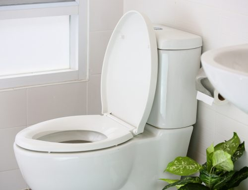 Learn all about the parts of a toilet from a plumber in Templestowe